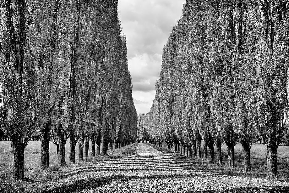 Stonehenge NSW